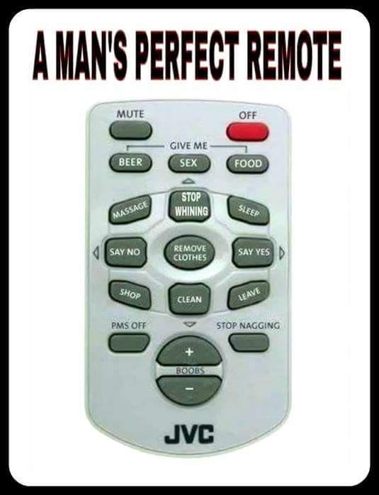 Man's perfect remote? - CHIT CHAT - Old Skool Ford