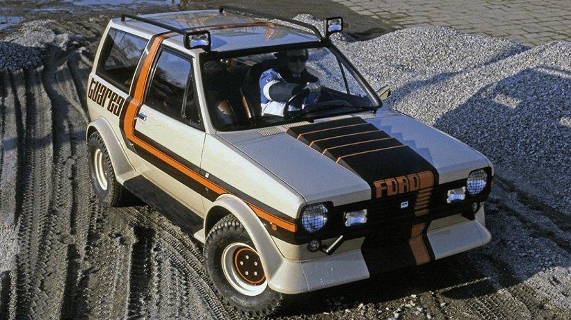 FiestaTuareg6.jpg.a524ab6918220860e17ec8be873bb62d.jpg