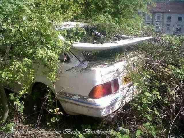 WreckSierra.jpg.ea1ab91e3df2077aafcd0b6faaa00bb7.jpg