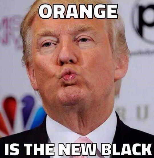 Orangeisthenewblack1.jpg.93165a108eeabde2f735a68b0e3e25fe.jpg