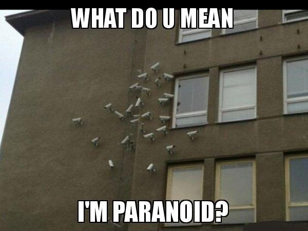 ParanoidCameras.jpeg.59c48af8c441aeae8e06681f34d44ff4.jpeg